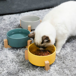 Large Ceramic Pet Bowl