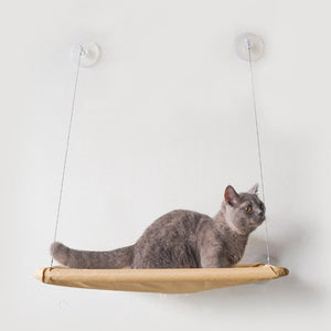 Window Suspension Sucker Cat Hammock