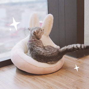 Cute Rabbit Ear Cat House