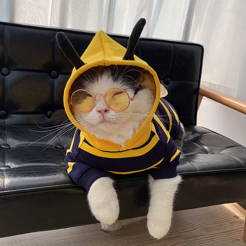 Bee Shaped Pet Sweater