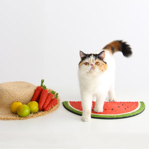 Fruit Shaped Cat Stracher Toy