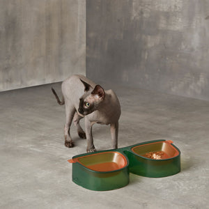 Antibacterial Anti-Tipping Double Cat Dog Bowl - happyandpolly