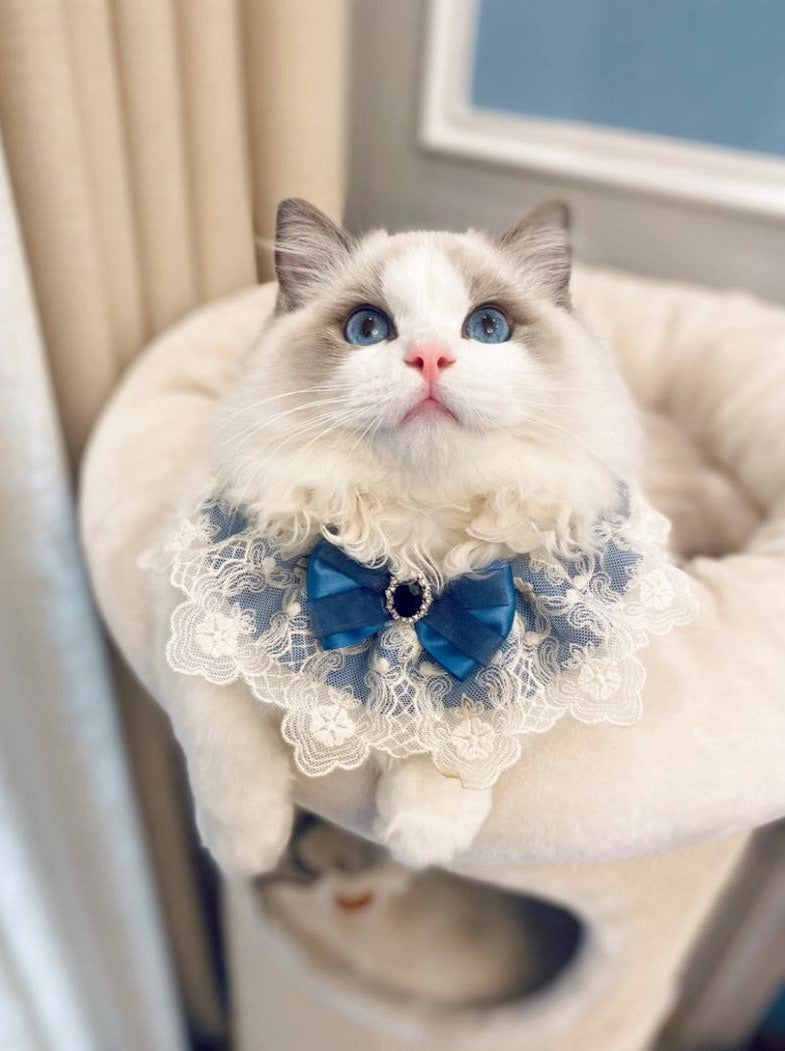 Handmade Blue  Cat Bib - happyandpolly