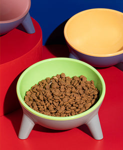 Contrasting Color Resin Pet Bowl
