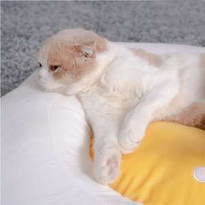 Egg Series Egg Shaped Cat Bed