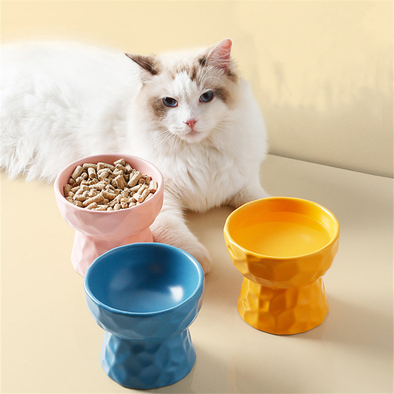 Multi Color Raised Ceramic Cat Bowl