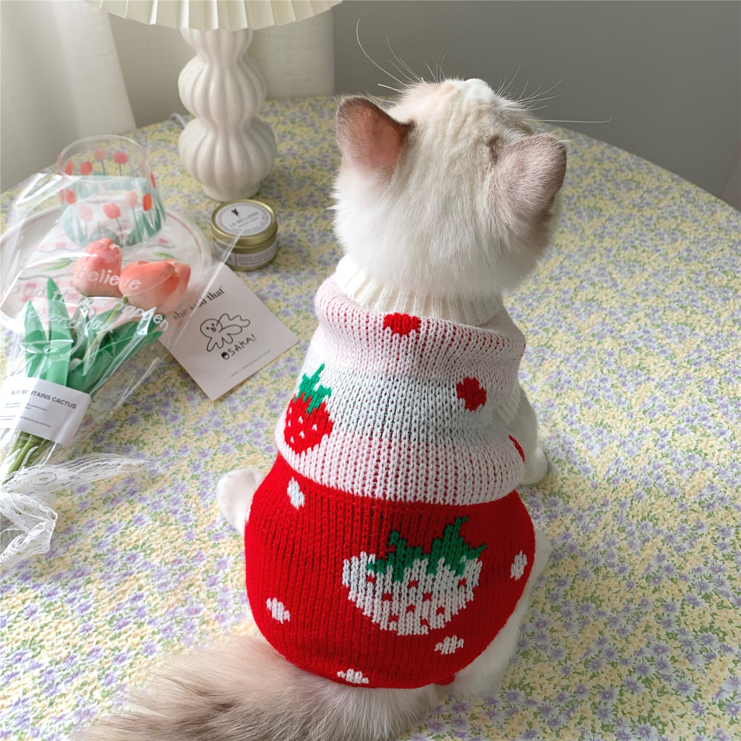 Pet Strawberry Heart Warm Vest