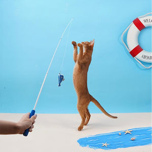 Fishing Rod Shaped Cat Catnip Teaser Wand