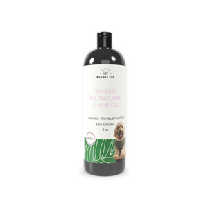 Dog Shampoo with aloe for calming and itch relief
