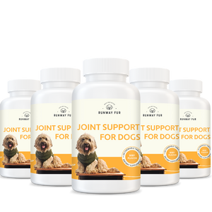 Hip & Joint Support for Dogs