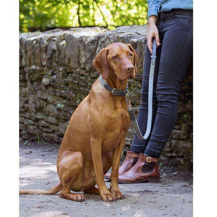 ;Mutts & Hounds halsbånd, Stoneham tweed/leather;Mutts & Hounds halsbånd, Stoneham tweed/leather;Mutts & Hounds halsbånd, Stoneham tweed/leather;Mutts & Hounds halsbånd, Stoneham tweed/leather;Mutts & Hounds halsbånd, Stoneham tweed/leather; (4627039420549)