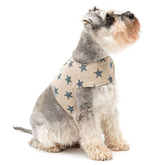 ;Mutts & Hounds hundesele, stars;Mutts & Hounds hundesele, stars;Mutts & Hounds hundesele, stars;Mutts & Hounds hundesele, stars;Mutts & Hounds hundesele, stars; (4626964709509)