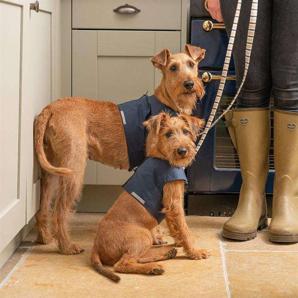 ;Mutts & Hounds hundesele, Navy Wax;Mutts & Hounds hundesele, Navy Wax;Mutts & Hounds hundesele, Navy Wax;Mutts & Hounds hundesele, Navy Wax; (4626978046085)