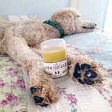 ;Natural Dog Company - Paw Soother Stick;Natural Dog Company - Paw Soother Stick; (4627124977797)