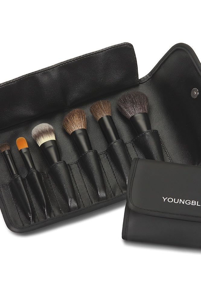 Youngblood 6 piece mini-brush set