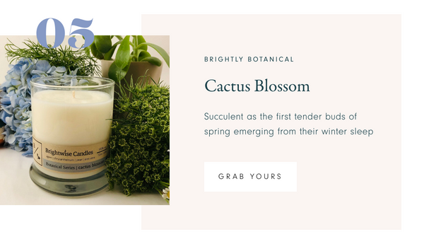 Brightwise Candles Cactus Blossom Scented Soy Wax Candle