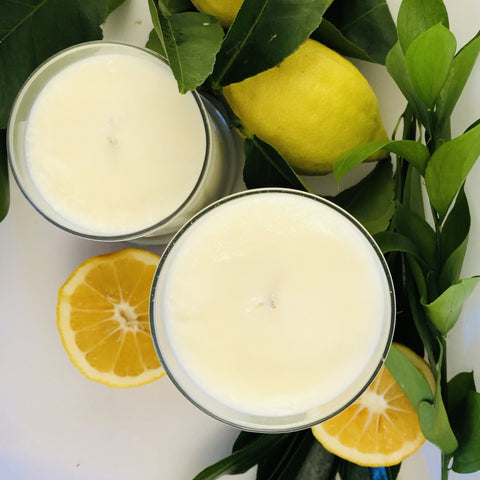 Lemon Verbena - Brightwise Candles