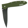 Kershaw Leek Olive with Black Blade 1660OLB
