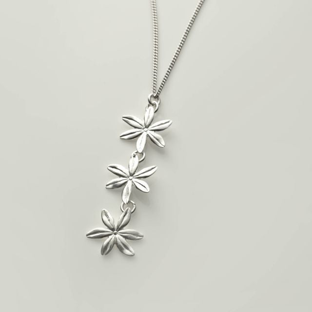 Cover me in daisies in silver gift set