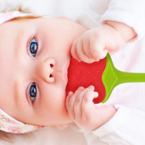 Baby Fruit Teethers