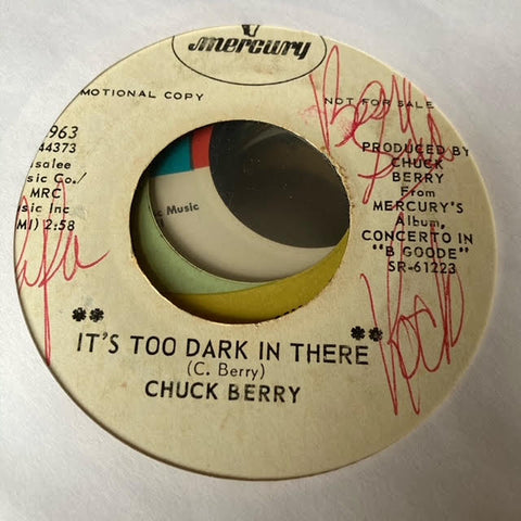 Chuck Berry - It's Too Dark in There (Used 45)