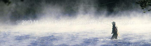 Window Graphic - 16x54 Into The Mist