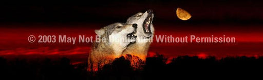 Window Graphic - 16x54 Alpha Male Howl