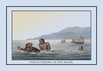 Turtle Fishing In The Water 20x30 poster