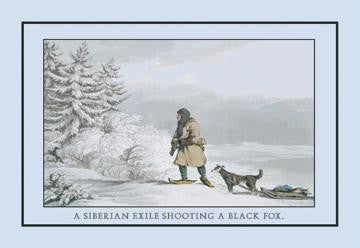A Siberian Exile Prepares To Shoot A Black Fox 20x30 poster