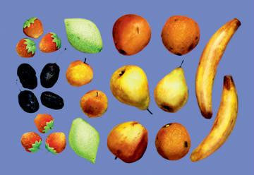 Painted Fruit 12x18 Giclee on canvas