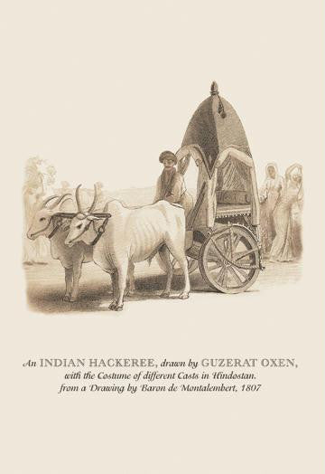 An Indian Hackeree 12x18 Giclee on canvas