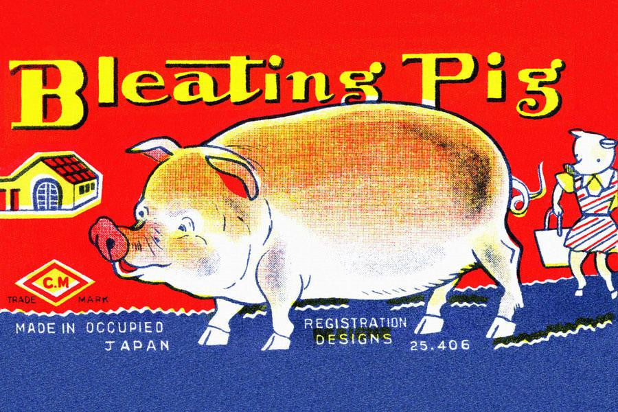 Bleating Pig 12x18 Giclee on canvas