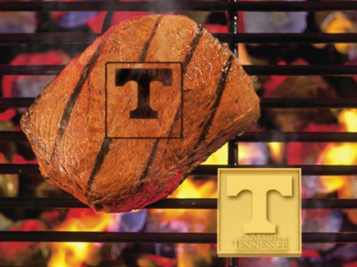 FanMats University of Tennessee Grilling Fanbrand