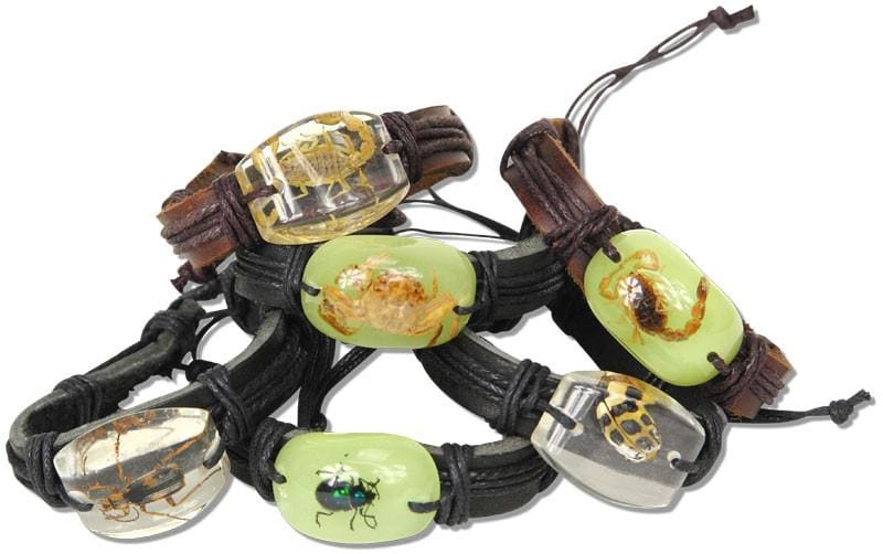 Bug Encased In Acrylic Leather Bracelet - Jewelry