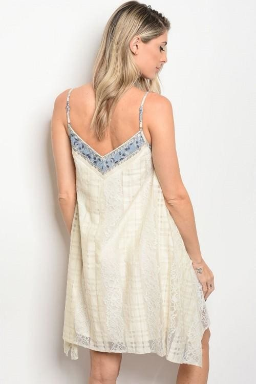 Natural Lace Skater Dress - Apparel