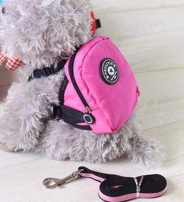 Pet Style Mini Backpack - Dogs and Cats Boutique