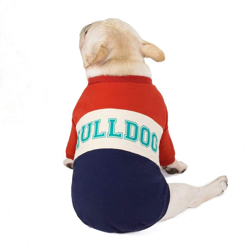 Bulldog Pet Sweater - Dogs and Cats Boutique