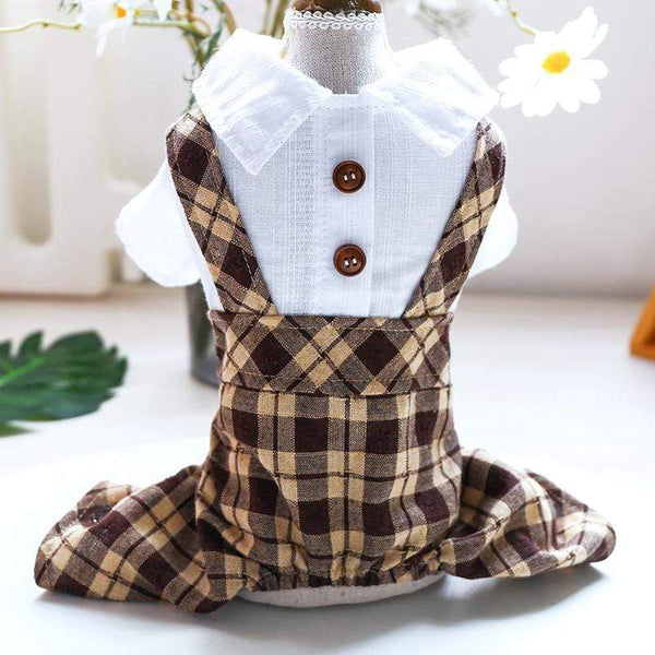 Button Up Dog Dress - Dogs and Cats Boutique