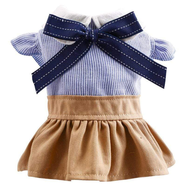 Bichon Blue Bow Student Dog Dress - Dogs and Cats Boutique