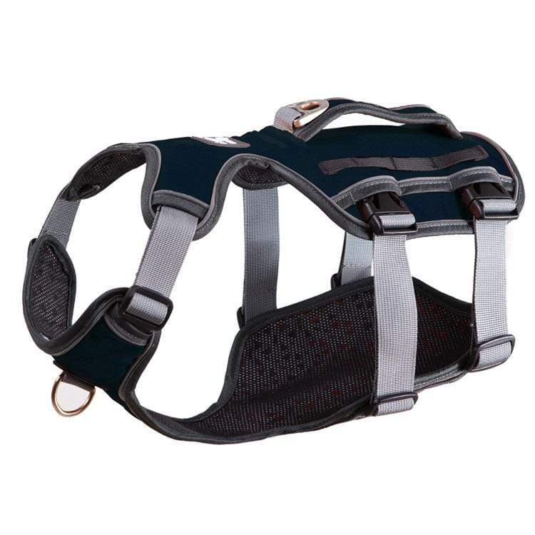 Dog Thoracolumbar Harness - Dogs and Cats Boutique