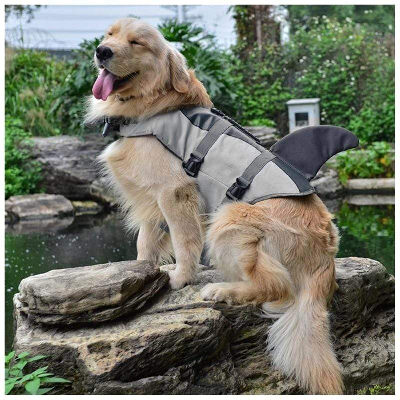 I'm A Shark Dog Life Vest - Dogs and Cats Boutique