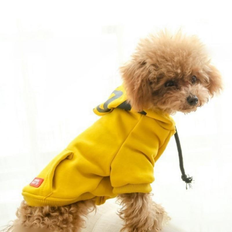 Summer Vibe Dog Hoodie - Dogs and Cats Boutique