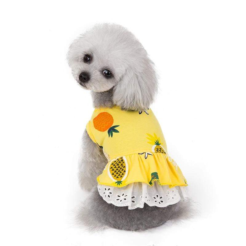 Pineapple Printed Dog Dress - Dogs and Cats Boutique