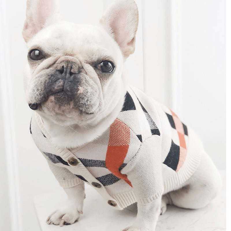 Soft Velvet Sweaters for Pets - Dogs and Cats Boutique