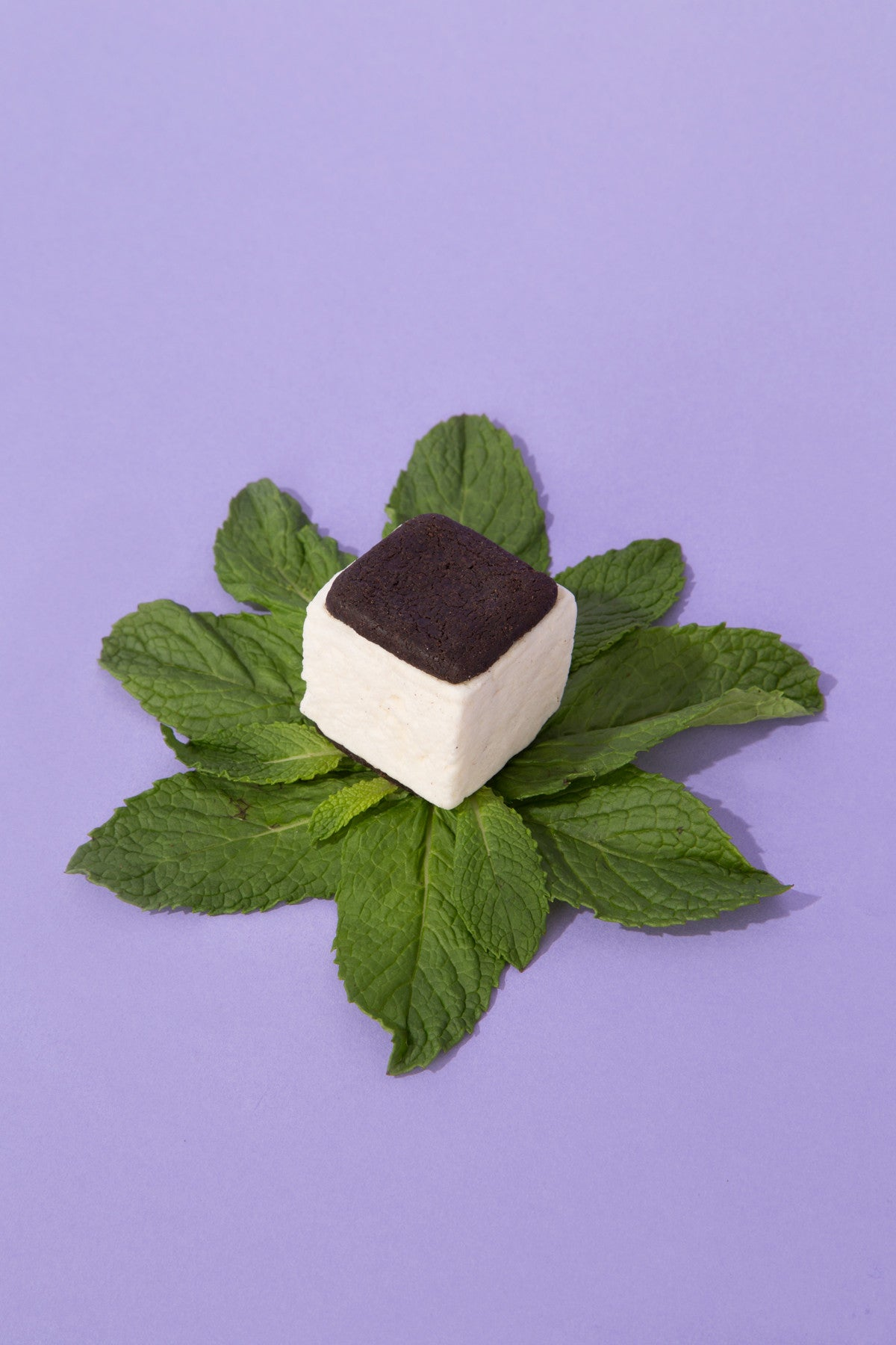 Peppermint Chocolate Malvi S'mores