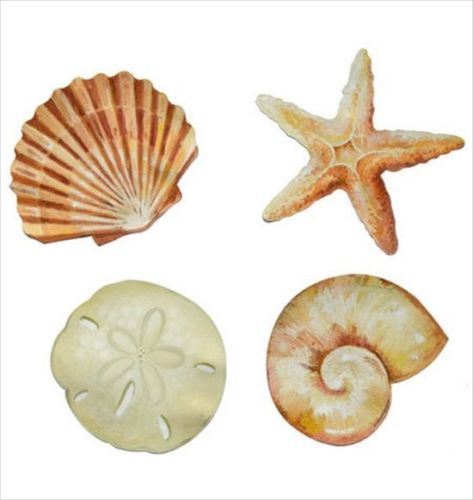 Sea Shells 50 count Wallies - all4wallswall-paper