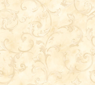 Fresco Scroll Butter Beige Wallpaper - all4wallswall-paper