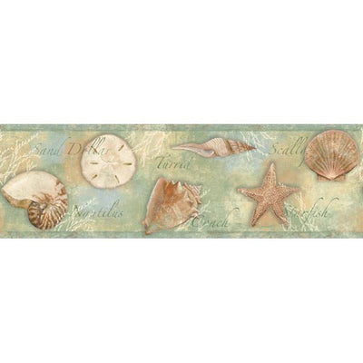 Titled Shells on Seafoam Green Easy Walls Wallpaper Border - all4wallswall-paper