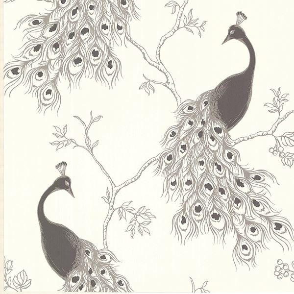Silver and Black Peacock on Off White Paste the Wall Wallpaper
