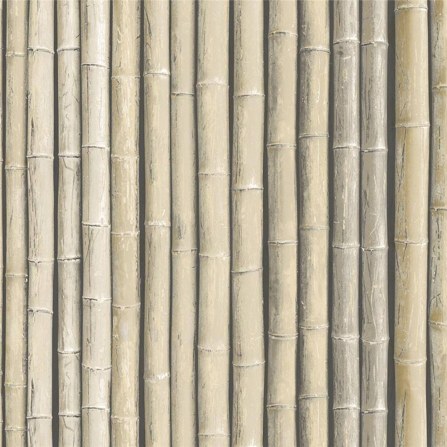 Bamboo Realistic Stalks in Beige Solid Vinyl on Paste the Wall Wallpaper - all4wallswall-paper